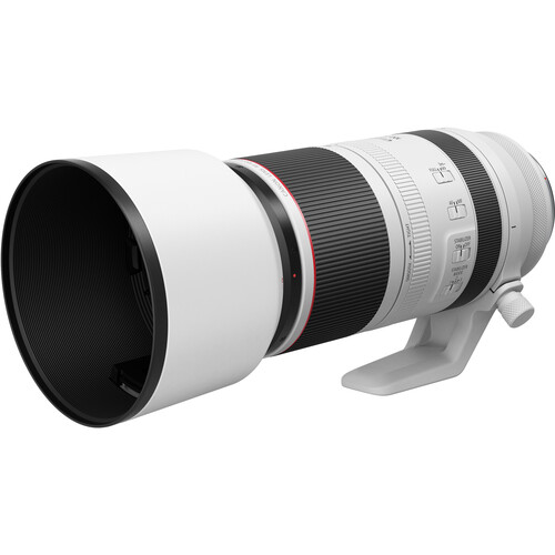 Canon EOS R5 Mirrorless Digital Camera with RF 100-500mm f/4.5-7.1L IS USM Lens