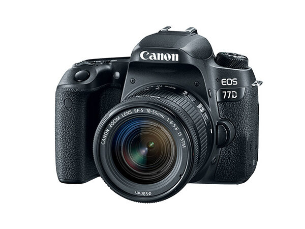 Canon EOS 77D 18-55mm STM (used)